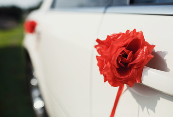 Red rose on the door of the wedding car
