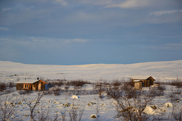 Arctic cottages in wilderness