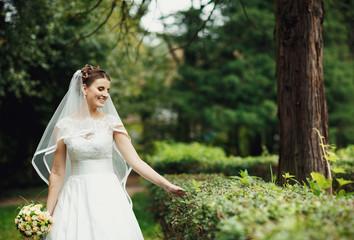 incredible bride walks among the green bushes