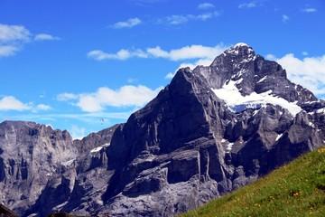 Berge rund um Grindelwald