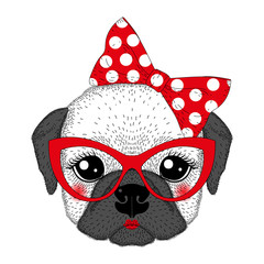 Cute french bulldog girl portrait with pin up bow tie on head, k