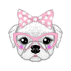Cute pug portrait with pin up bow tie on head, kat eyes glasses.