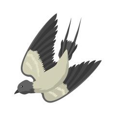 Swallow vector, vector illustration isolated bird, bird flying, bird silhouette, bird vector.