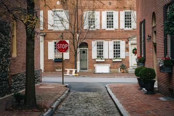 Historic brick houses and narrow cobblestone alley in Society Hi