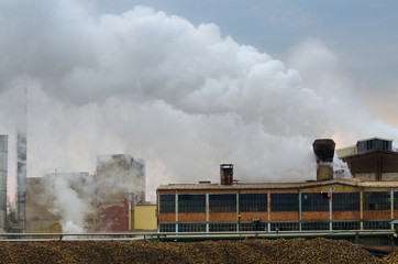 Sugar beet factory working at full speed