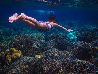 Underwater Photo of a Woman Diving , girl wearing bikini in action dive underwater ocean in thailand.