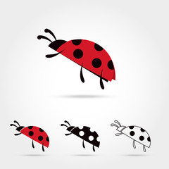 llustration of the ladybu