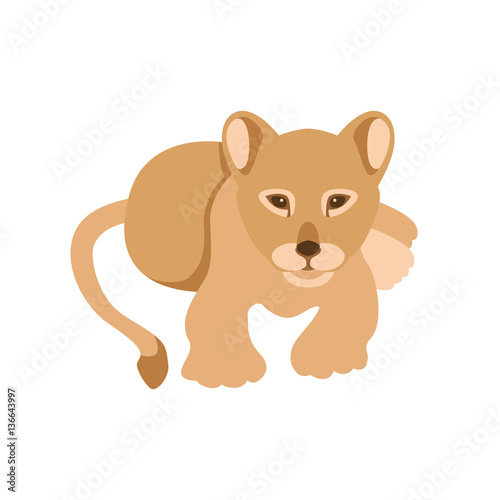 young lion vector illustration style Flat