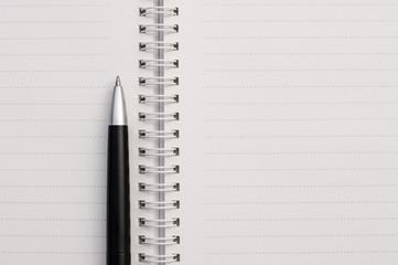 Pen on paper notebook.