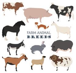 Animal farming, livestock. Cattle, pig, goat, ship, horse, donke