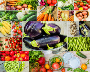 Collage of different vegetables. Vegetarian food.