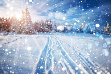 winter road. Beautiful color high-res illustration with a holida