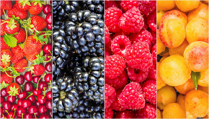 Fruits and berries. Collage.
