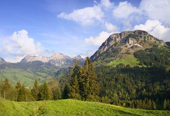 Swiss Spring Landscape