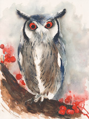Owl screech watercolor painting isolated on white background