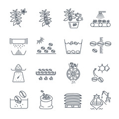 set of thin line icons coffee production and processing