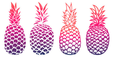 Set of pineapple illustrations isolated on white background. Des
