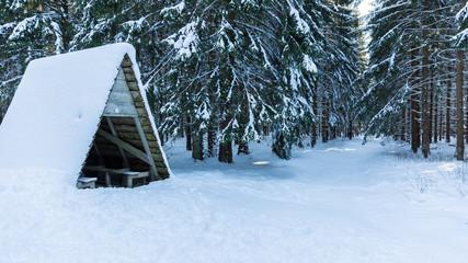 Wanderhütte im Harz