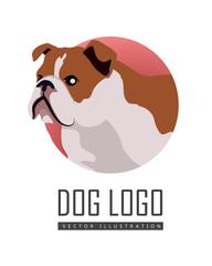 Bulldog Dog Logo on White Background
