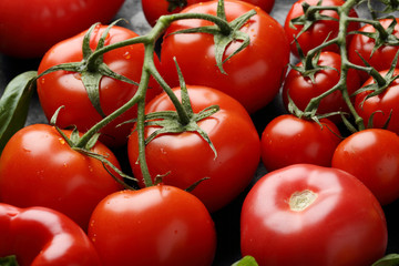 Red tomatoes food background