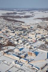 Dalmatovo Assumption Monastery in winter, top view
