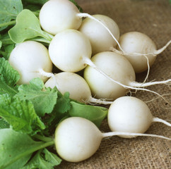 White ripe radishes with leaves