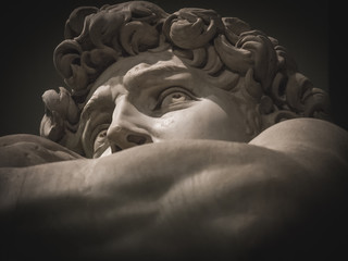 detail of the face of Michelangelo's David
