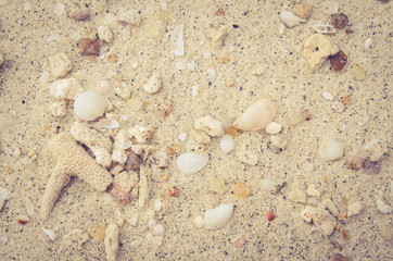 sand beach with rock frame with copyspace for text