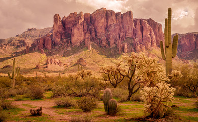 Wall Murals Drought Arizona desert landscape, Superstition Mountains