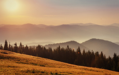 fog over the mountains. Carpathians. Ukraine. Europe