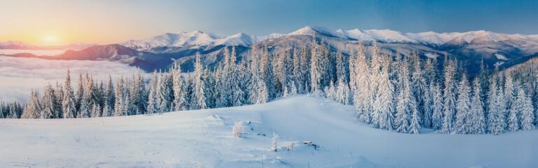 Winter landscape glowing by sunlight. Dramatic wintry scene. Car