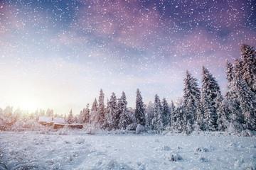 Dramatic wintry scene. Carpathian, Ukraine, Europe. Bokeh light