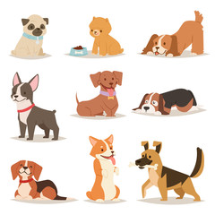 Funny cartoon dogs characters different breads illustration.