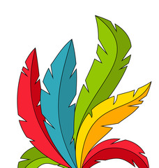 Colorful Feathers on White Background