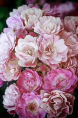 bouquet of pink spring flowers roses