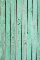 wooden light green texture
