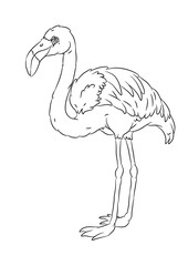 happy smiling cartoon standing flamingo coloring page