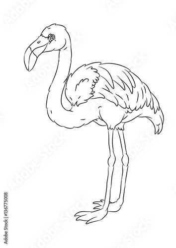 Happy Smiling Cartoon Standing Flamingo Coloring Page Stock Image