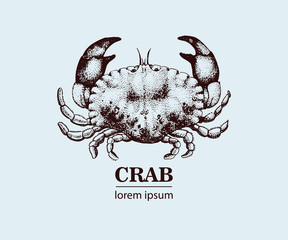 Vector seafood illustration with crab. Retro logo temtlate.