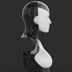 3D Illustration Of A Female Humanoid Android Robot