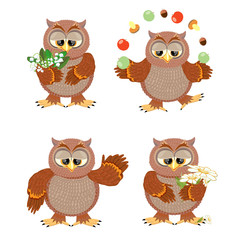 Set brown owls with flowers on a white background
