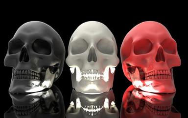 3D Illustration of A Human Skull