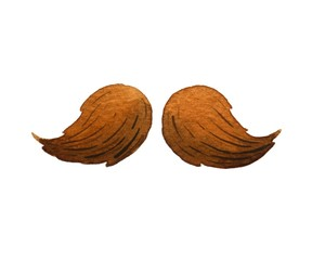Men's mustache