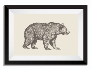 Vintage Retro Vector Drawing of Bear in Frame