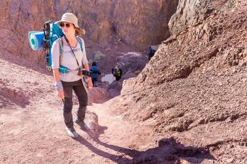 Wall Mural - Young woman backpacker tourist standing stone desert canyon trai