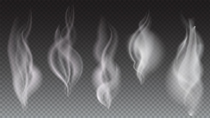 White smoke waves on transparent background vector illustration