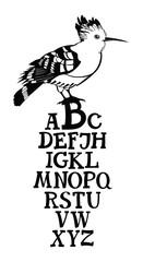 Birds collection Poster Alphabet with Hoopoe bird