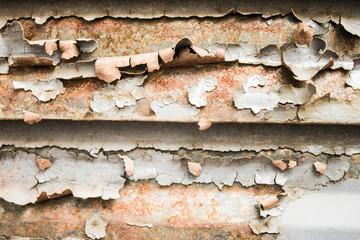 Rusted Door Detail