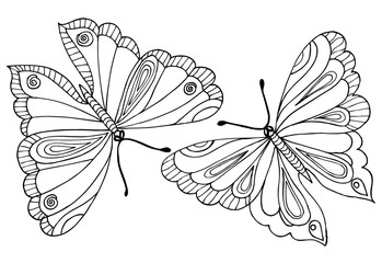 Vector drawing of butterflies for  coloring book.