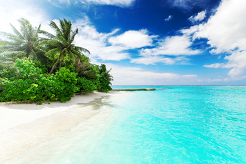 Wall Mural - Beautiful nature landscape of tropical island at daytime, Maldives